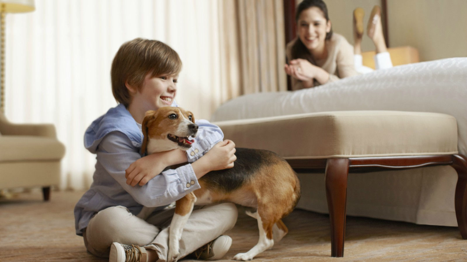 Pet Friendly Hotel in Atlantic City | Sheraton Atlantic City Convention Center Hotel
